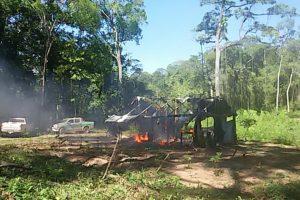 Ibama desarticula grilagem na Terra Indígena Urubu Branco (MT)