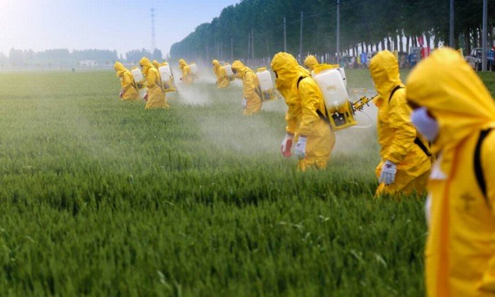 Mudanças na lei dos agrotóxicos põem em risco saúde e ambiente